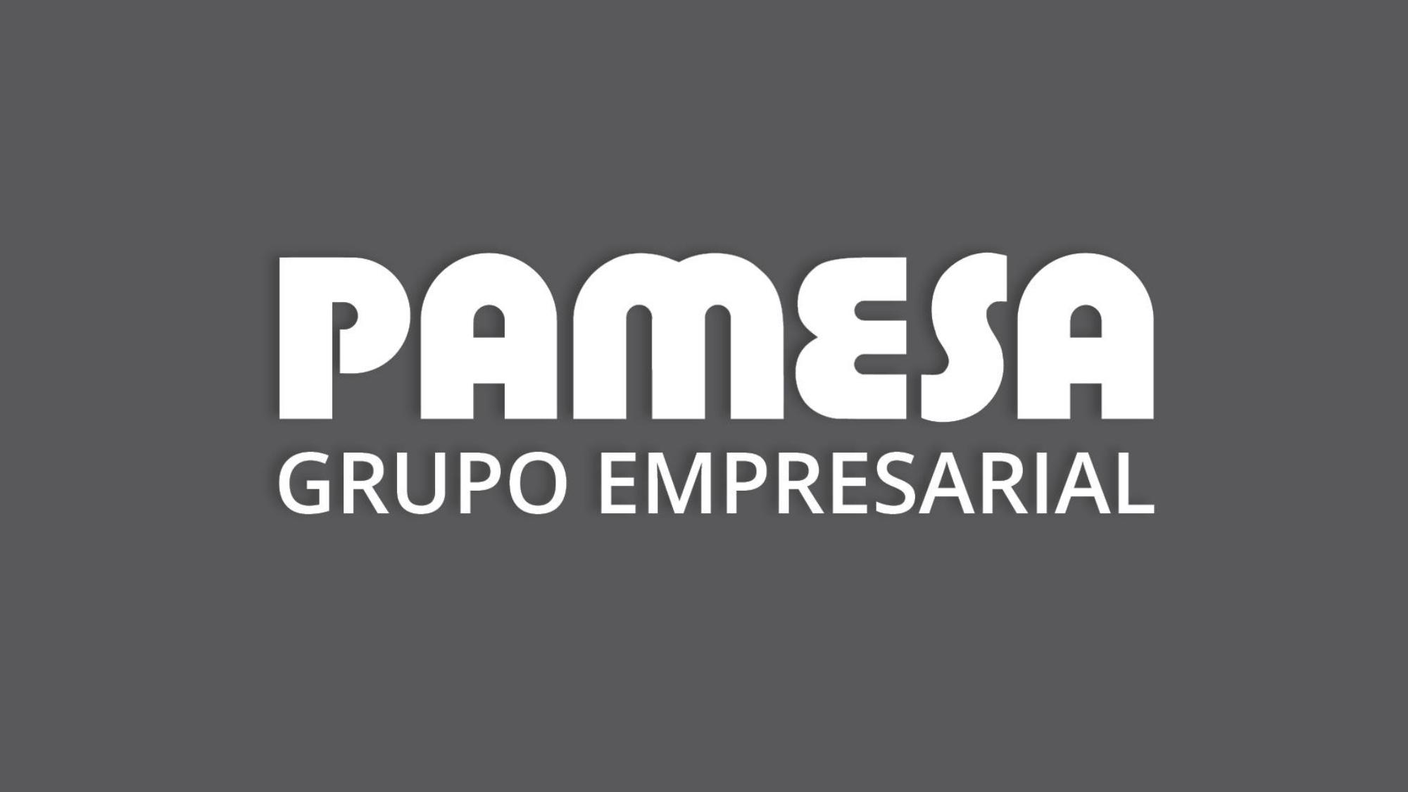 RESULTADOS_ pamesa_grupo_empresarial_page-0001