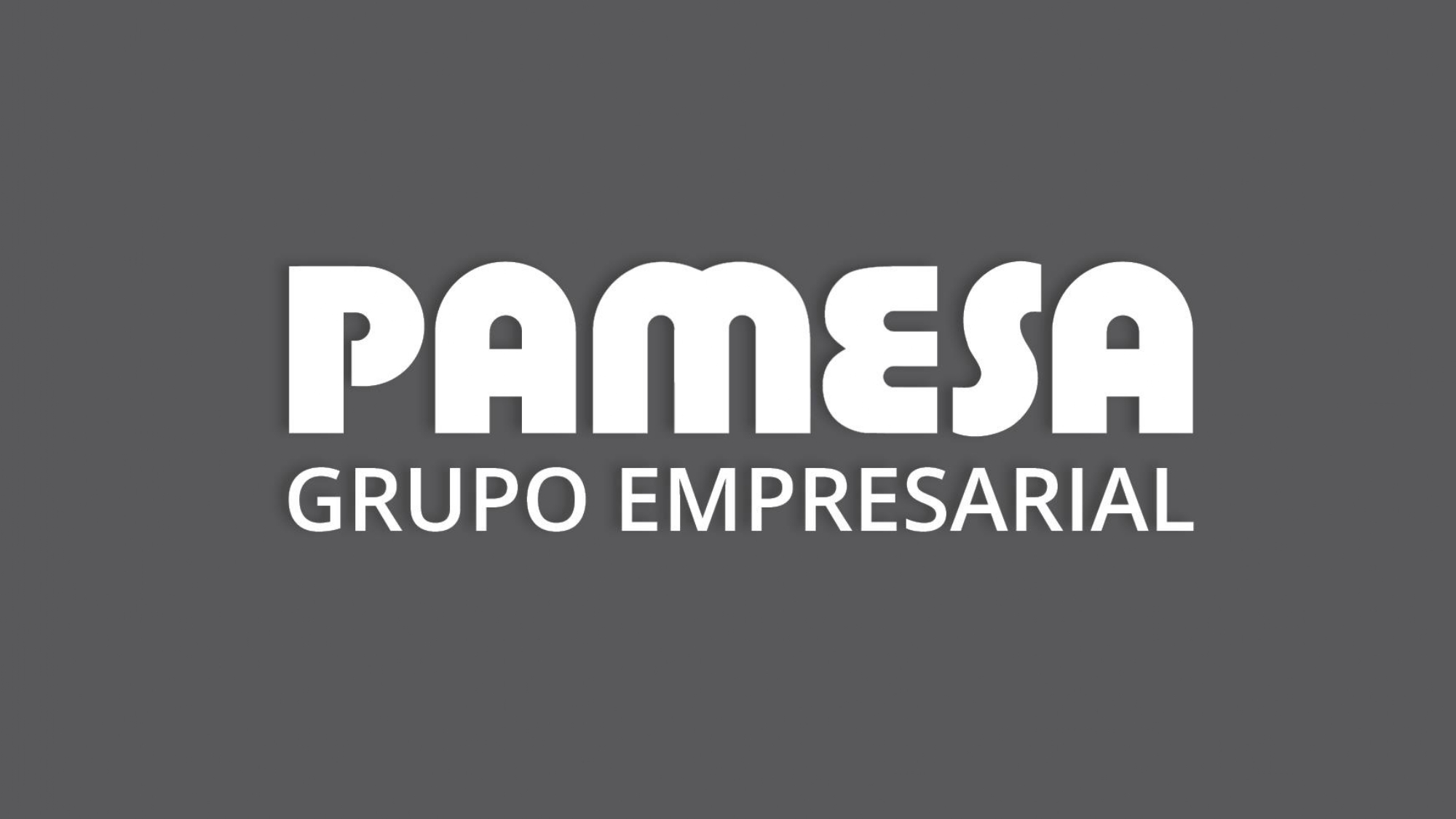 RESULTADOS_ pamesa_grupo_empresarial_page-0063
